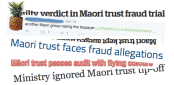 'Another Māori group duping the taxpayer'